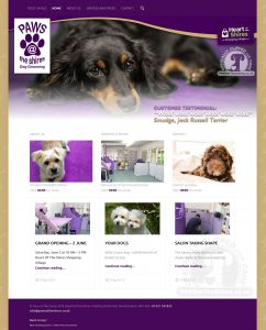 Website Design – Paws at the Shires