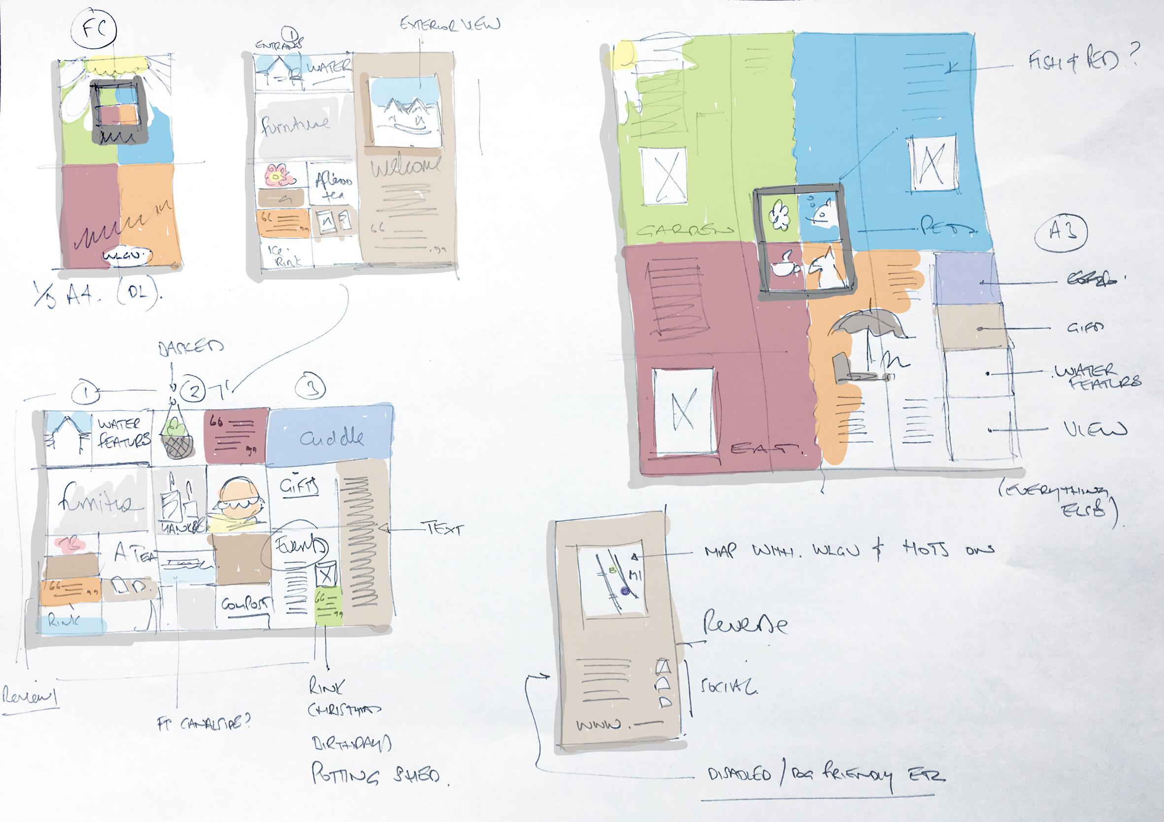 leaflet design rugby